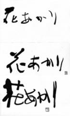 hanaakari_4.JPEG